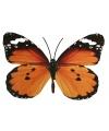 Oranje zwart gekleurde metalen vlinder