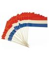 Holland feest vlaggetjes