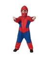 Spinnen held verkleed kostuum voor kinderen